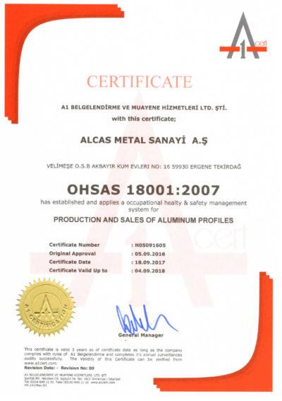 thumbnail of OHSAS 18001 ALCAS METAL – H05091605 ING